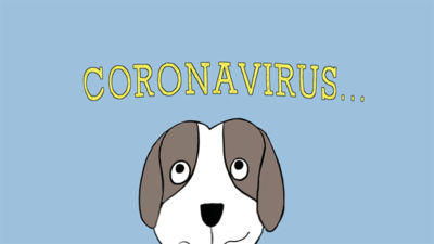 Dave the Dog is Worried about Coronavirus: A Nurse Dotty Story